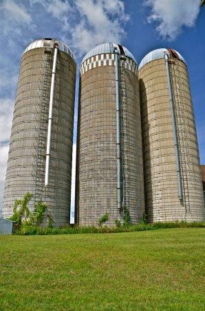 Three white stave silos