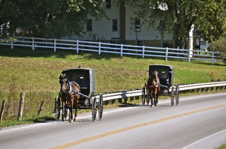 Two Amish buggies on the highway