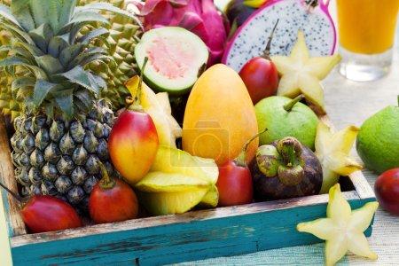 Photo pour Assortiment de fruits exotiques tropicaux avec smoothie et jus frais sur fond tropical extérieur - image libre de droit
