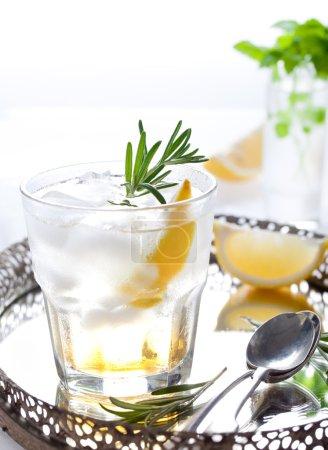 Photo pour Gin, citron, romarin, cocktail au miel et herbes fraîches - image libre de droit