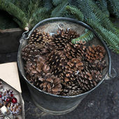 basket full of pine cones