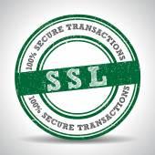 SSL 100 Safety Guarantee seal