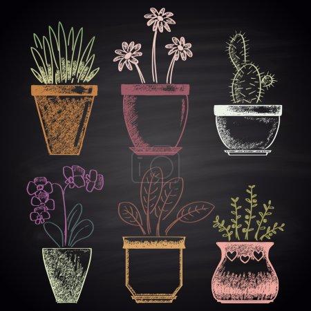 flowerpots, plants, flowers set