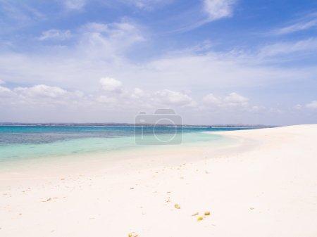 White sand of the beach
