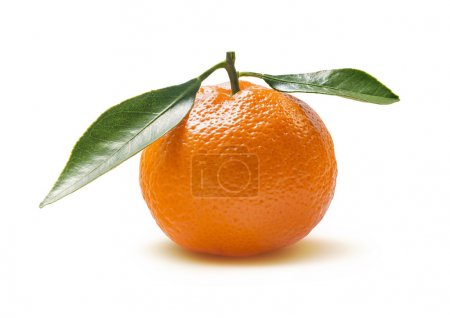 Mandarine simple avec feuilles isolées sur fond blanc
