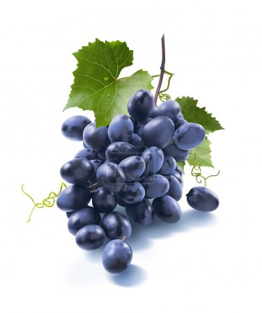 Small dry blue grapes bunch isolated on white background