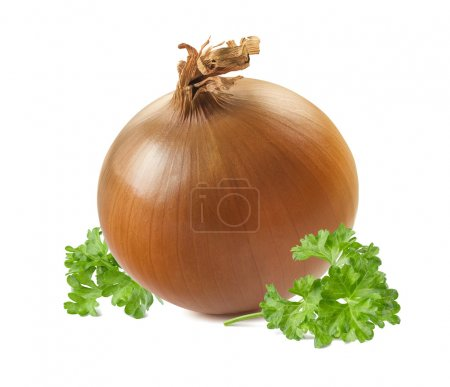 Whole yellow onion parsley isolated on white background