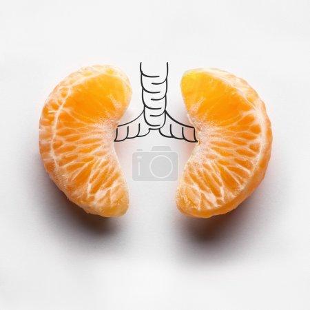 Photo pour Un concept de santé des poumons humains malsains d'un fumeur atteint d'un cancer du poumon dans l'ombre sombre, faite de segments de mandarine . - image libre de droit