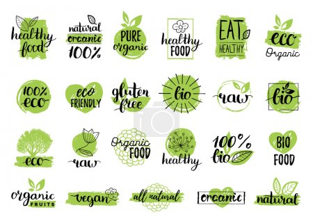 Illustration for Vector eco organic bio logos. Eco labels. Vegan, organic, healthy food logos. Raw, healthy,vegan food badge, labels. Organic food tags and elements set for cafe,restaurants,organic products packaging - Royalty Free Image