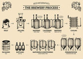 beer infographics with illustrations of brewery process