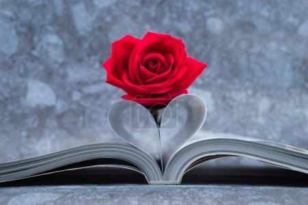 Rose placed on the books page that is bent into a heart shape