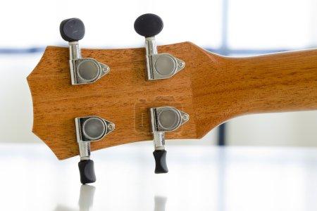 Close-up Part of ukulele guitar