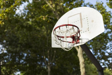 Basketball hoop in sunlight in a park with trees in the background