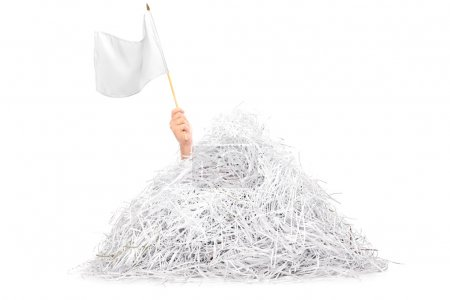Photo for Hand waving white flag from pile of shredded paper isolated on white background - Royalty Free Image