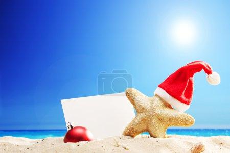 Starfish with Santa hat on beach