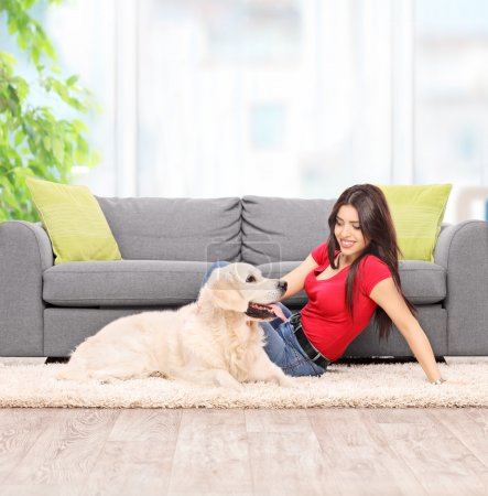 Photo for Young woman petting a dog seated on carpet next to a modern gray sofa at home shot with tilt and shift lens - Royalty Free Image