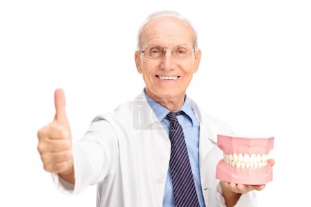 Dentist holding a denture and giving thumb up