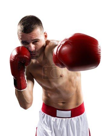 Photo pour Boxer professionnel est isolé sur fond blanc - image libre de droit