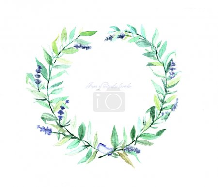 Frame of watercolor of lavender. Can be used as a greeting card for background of  wedding day ,Valentine's day, birthday, mother's day and so on.
