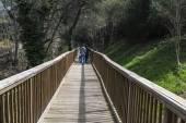 Family through a wooden bridge