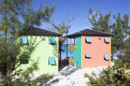 Caribbean Paint