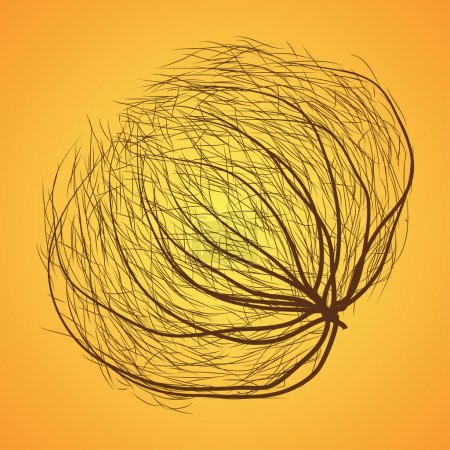 Illustration for Round messy brown rolling tumbleweed . Usually these can see in California area or near by deserts. These are dried plant rolling with wind - Royalty Free Image