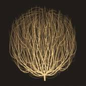 Tumbleweed graphic art design