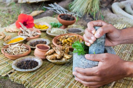 Ayurveda Doctor and Medicine