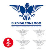 Template corporate company signs Bird eagle falcon Corporate style Male logo Serious rigorous Falcon hunting