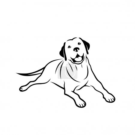 Labrador retriever sign