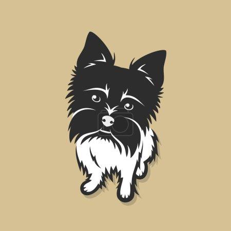 Black yorkshire terrier