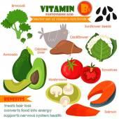 Vitamins and Minerals foods Illustrator set 9.Vector set of vita