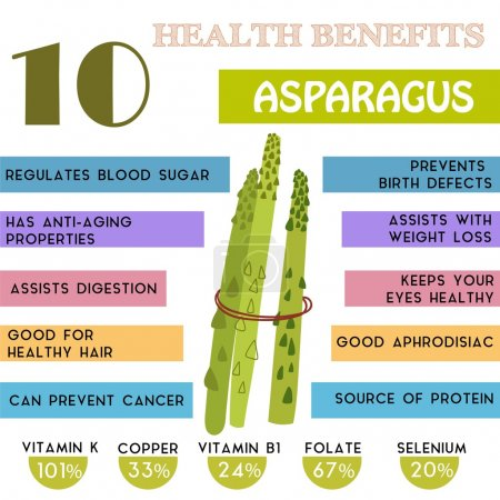 10 Health benefits information of Asparagus. Nutrients infograph