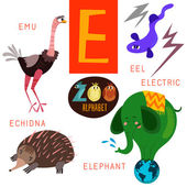 Cute zoo alphabet in vector E letter Funny cartoon animals