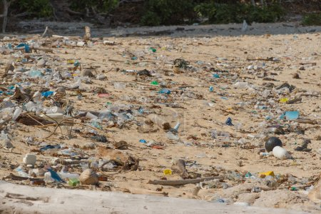 Dirty beach on the island of Little Andaman in the Indian Ocean