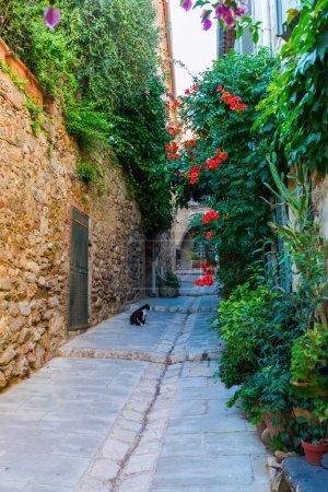 Photo pour Ruelle dans le pittoresque village provençal Grimaud, France - image libre de droit