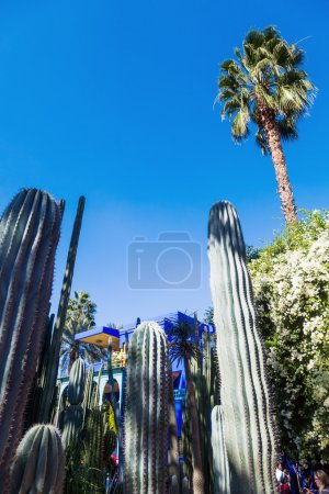 Majorelle Garden in Marrakesh, Morocco