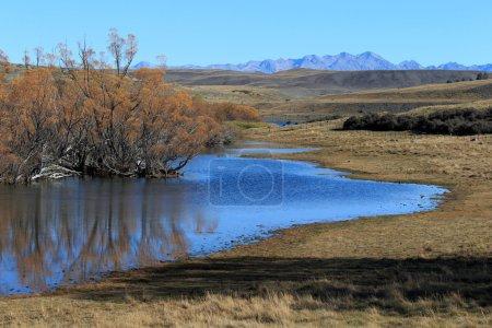 Photo pour Zones humides à Fork River, Tekapo dans la vallée des glaciers à Canterbury, Nouvelle-Zélande - image libre de droit