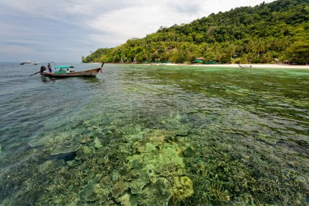Tourist visit the islands off Phuket and explore the coral reefs