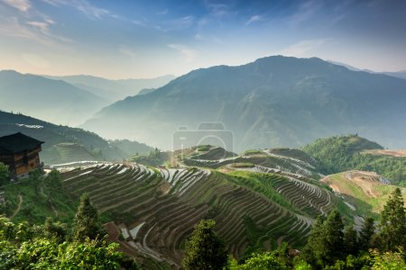 Photo for Terraced rice fields cut into the hills in Ping An, Yunnan Province, China. - Royalty Free Image