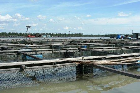 Fish farm in Pulau Ketam, Malaysia.