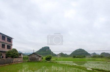 Farmland in Guangxi, China.