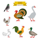 Flat design birds icon set