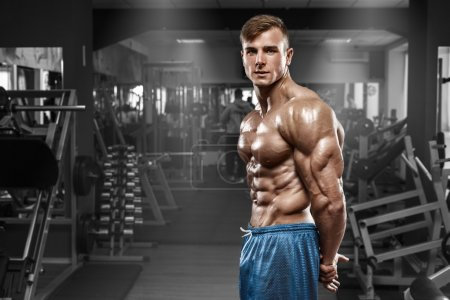 Photo for Sexy muscular man posing in gym, shaped abdominal, showing triceps. Strong male naked torso abs, working out - Royalty Free Image