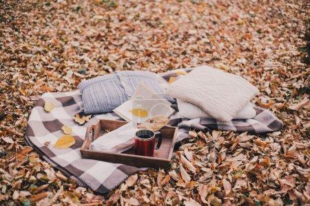 Photo pour Pique-nique d'automne nature morte avec thé frais, pain français, oreillers tricotés et livre dans une forêt - image libre de droit