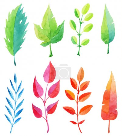 Vector set of multicolored watercolor leaves isola...
