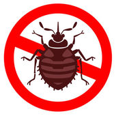 Home bedbug illustration