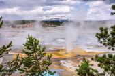 Upper geyser basin, Yellowstone National Park, Wyoming, USA