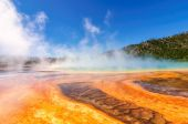 Beautiful cerulean geyser surrounded by colorful layers of bacteria