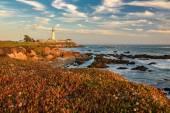 Lighthouse on the Beach, sunset,  Pigeon point lighthouse, California, USA